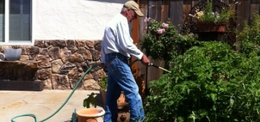 John learns to nurture a summer garden